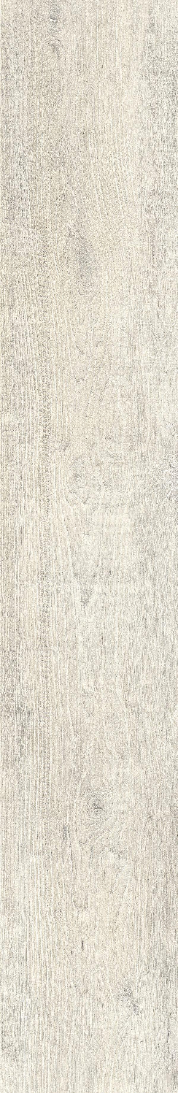 Molise-grijs-19,5x120