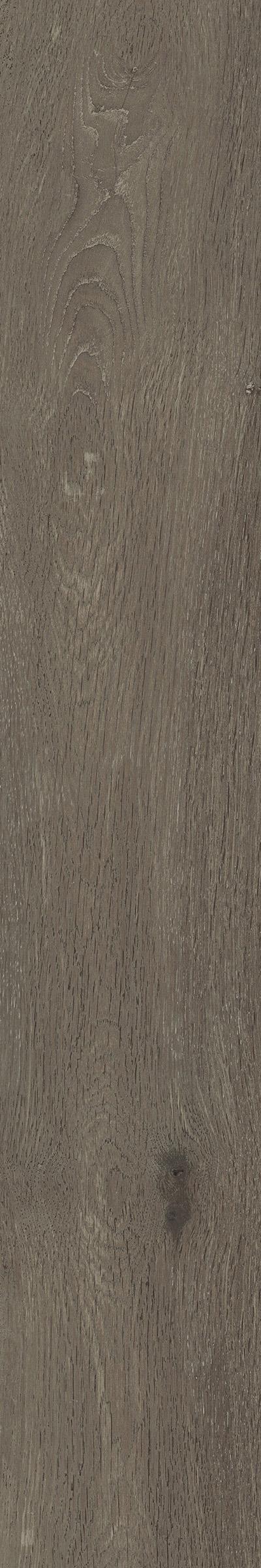 Naples-Bruin-20x120